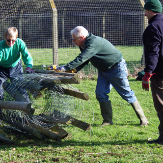 Removing old fencing at RSPCA, Godshill